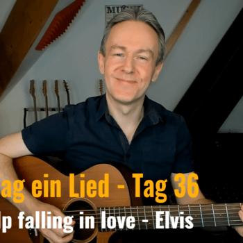 Jeden Tag ein Lied Tag 36 - Can't help falling in Love von Ellvis