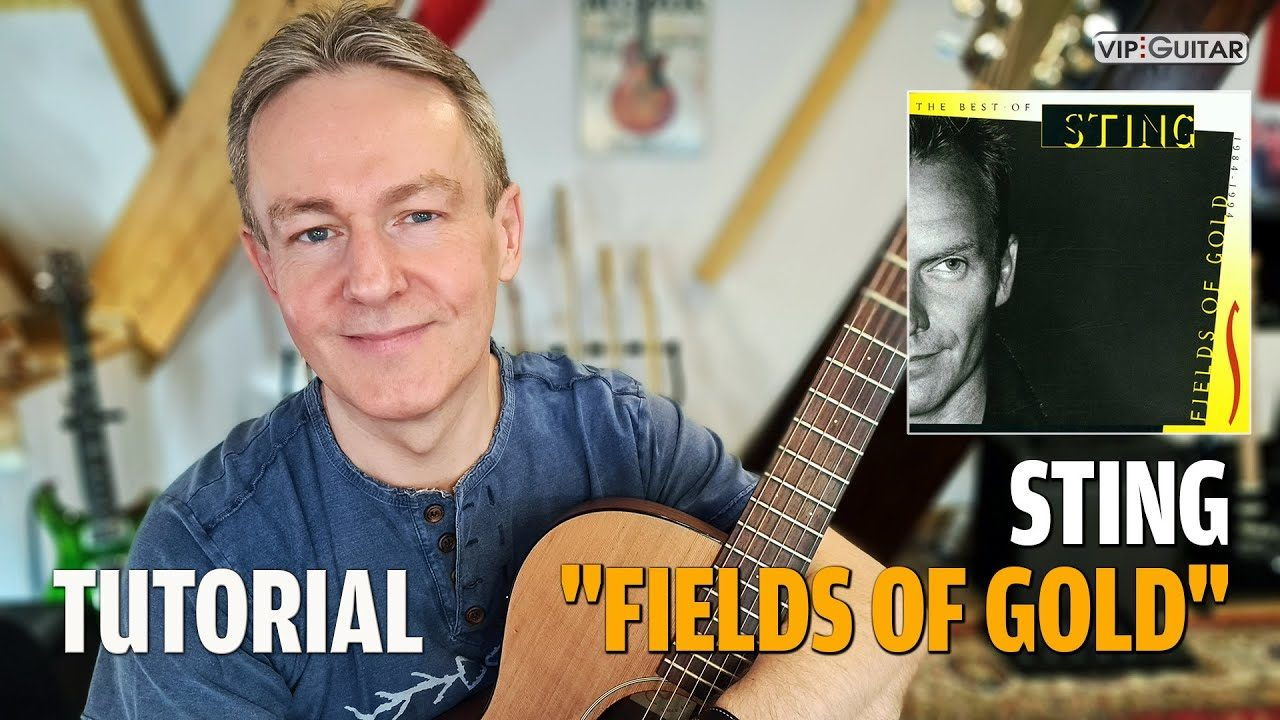 Fields of Gold Easy Akustik Version