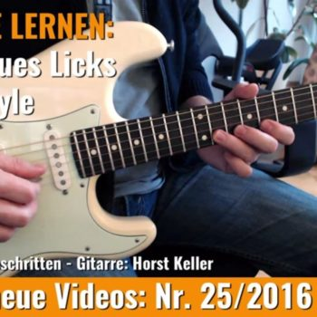 Stevie Ray Vaughan Texas Style Lick